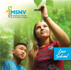 MSNV Viewbook