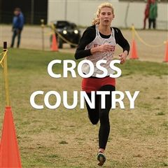 Cross Country link